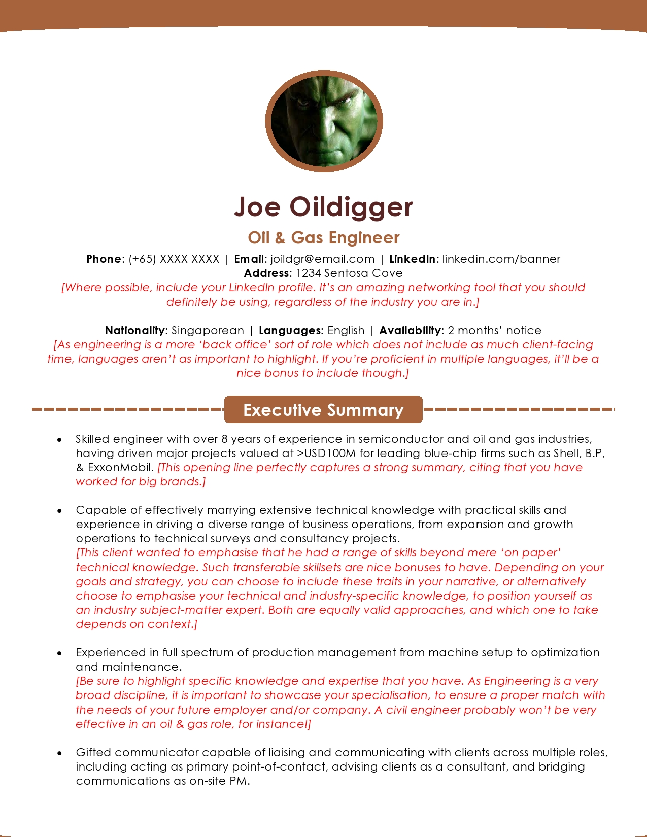 oil and gas resume sample  u0026 template